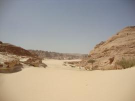 Sinai Peninsular