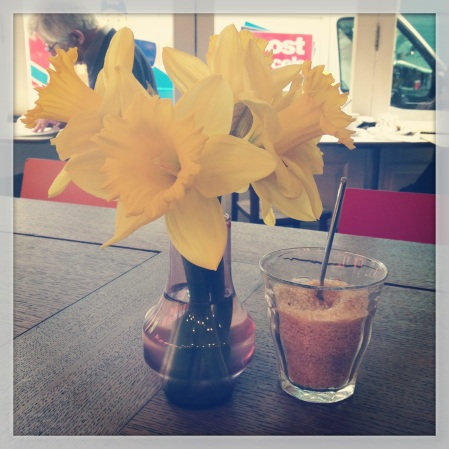 Daffodils in vase, Damson